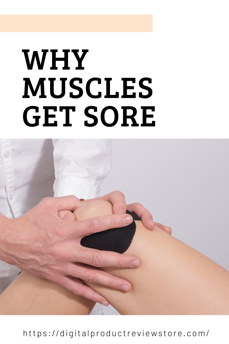 Why Muscles Get Sore